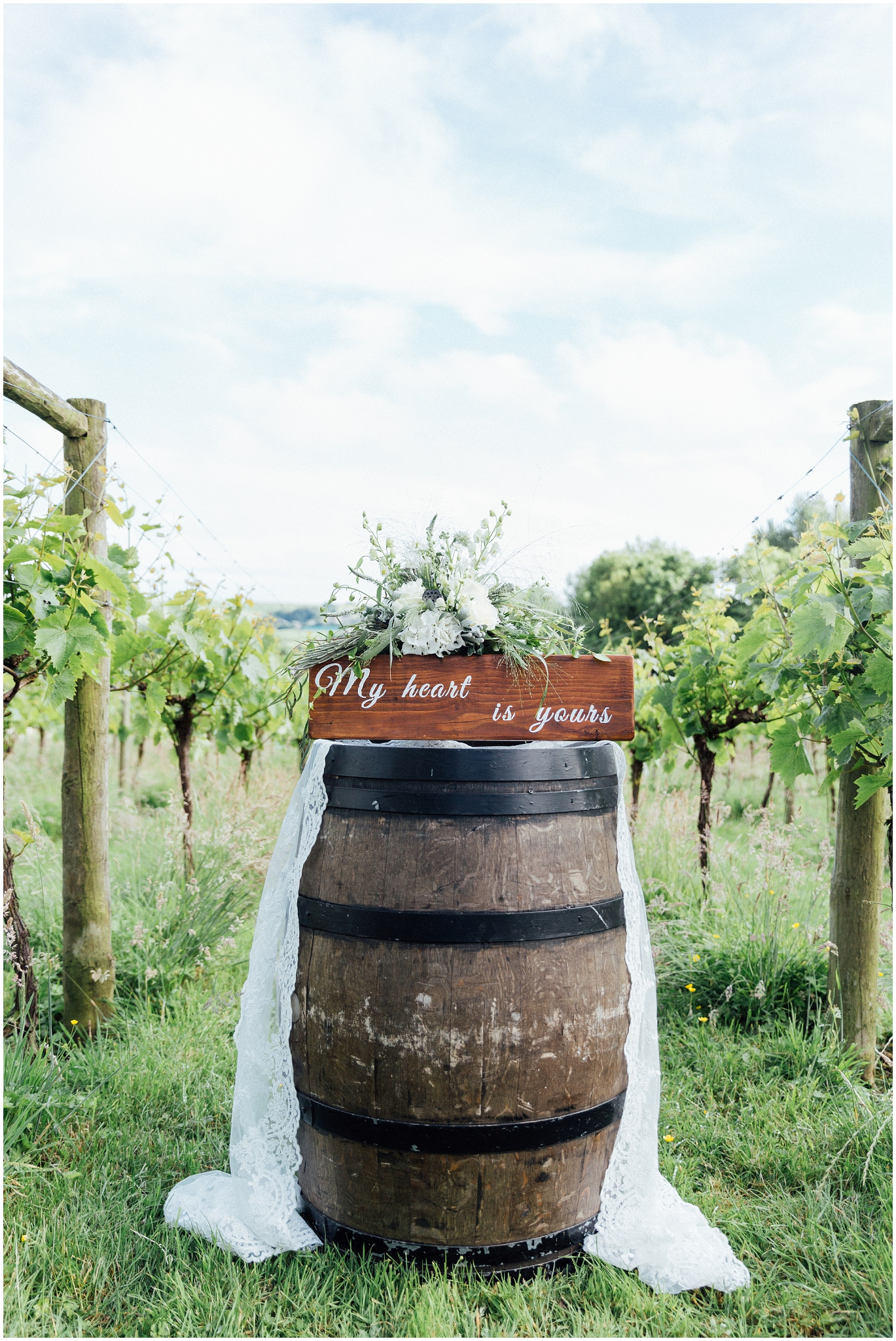 Vineyard Shoot - Dorset-407