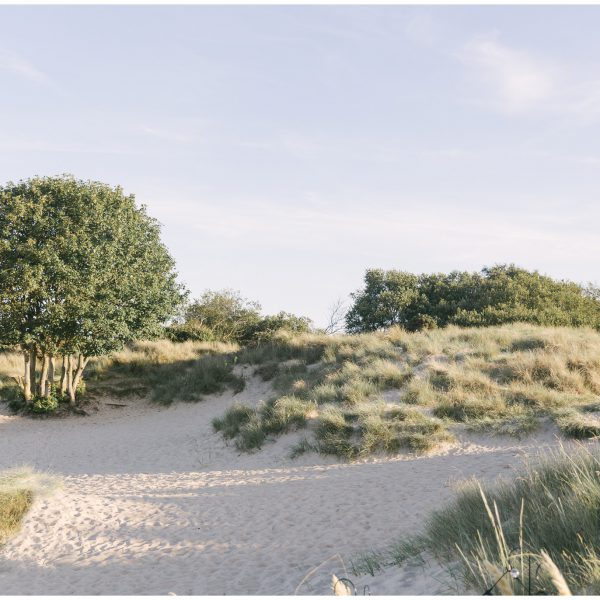 Intimate Beach Wedding Reception | Editorial Shoot with Linen and Lace